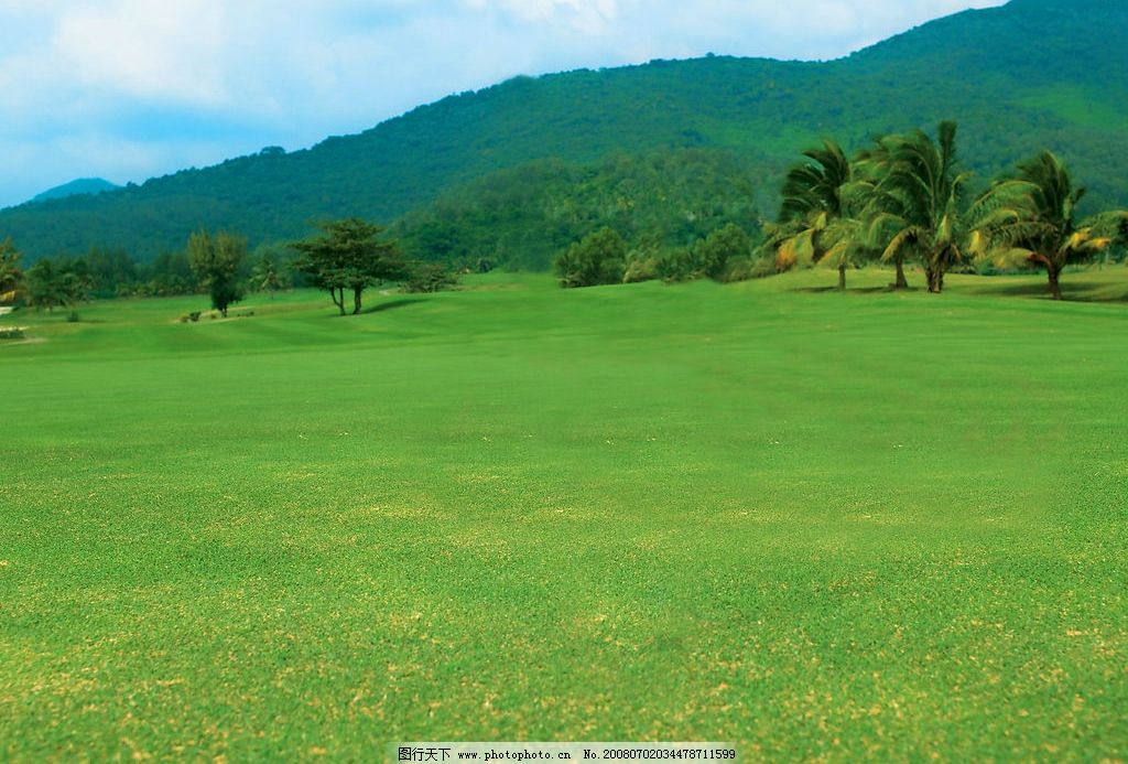 美丽风景 蓝天 白云 高山 树林 椰林 草地 绿色 摄影图库