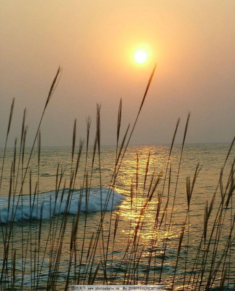 夕阳芦苇 浪花 湖面 旅游摄影 人文景观 风景 摄影图库