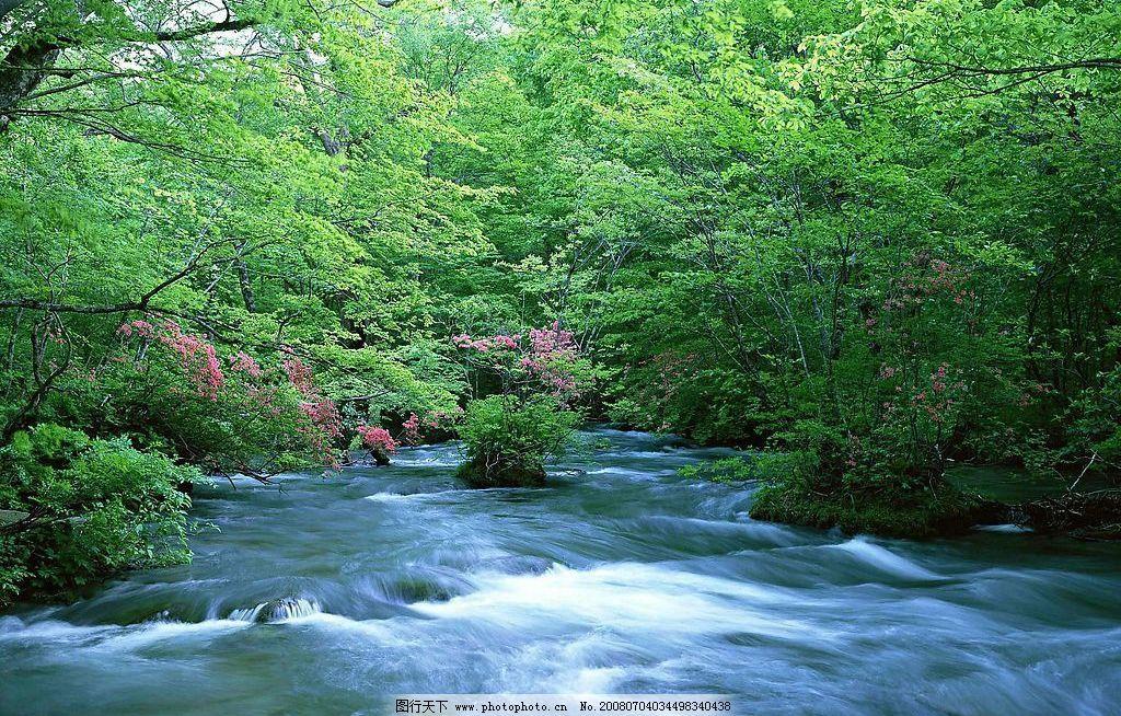 小溪流水 自然景观 山水风景 自然风光 摄影图库 72 jpg