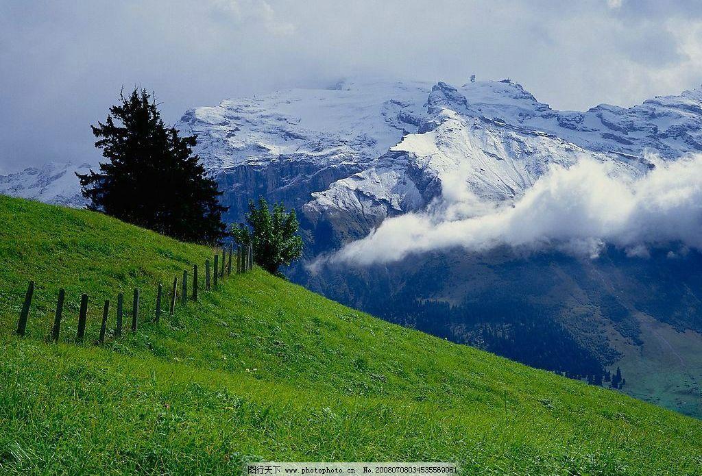 原野 草地 雪山 自然景观 田园风光 风景图 摄影图库 72 jpg