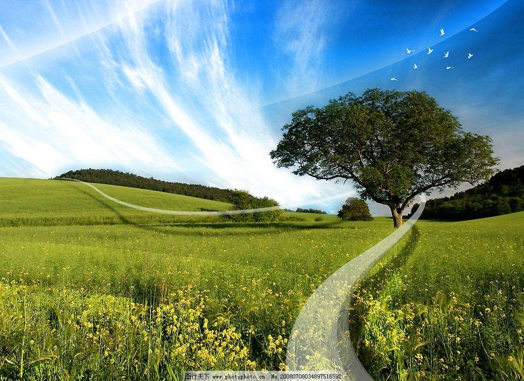 风景壁纸 天空 绿地 桌面 壁纸 自然景观 自然风景 摄影图库 100 jpg