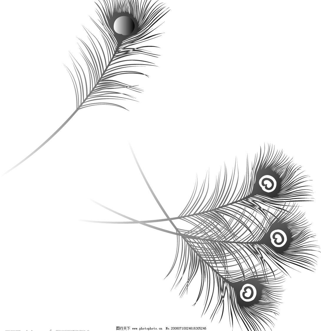 木刻版画素材羽毛