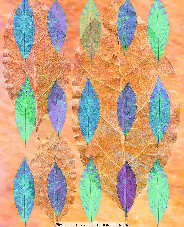 彩色叶子图片_山水风景_自然景观_图行天下图库