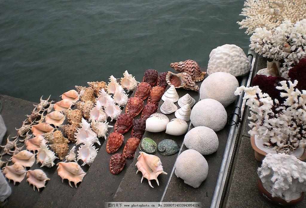 海产品图片