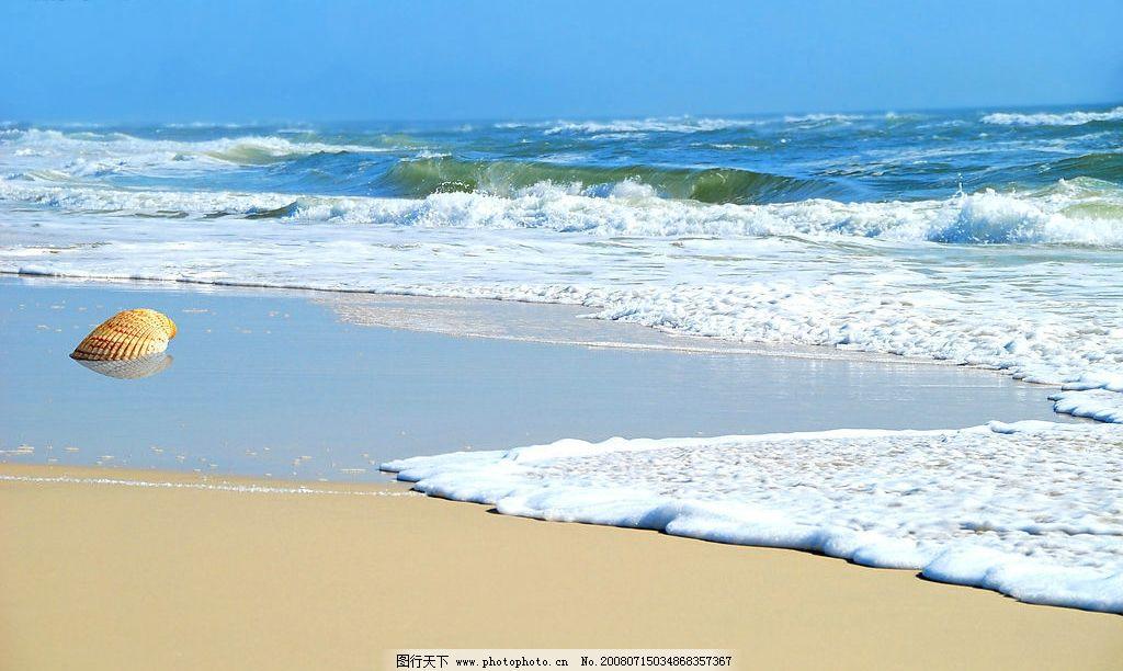 贝壳沙滩壁纸图片