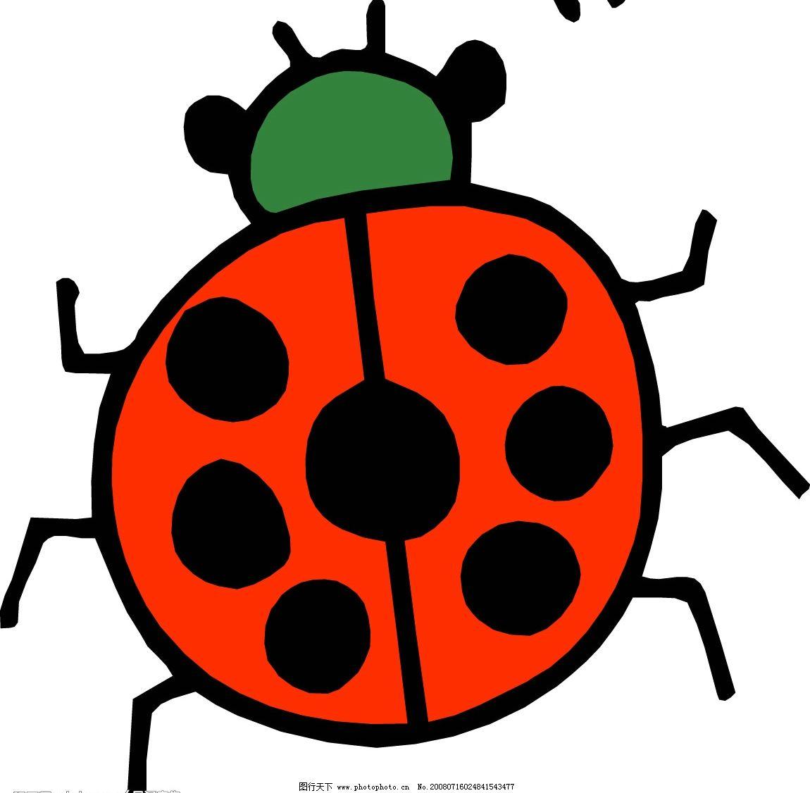 七星瓢虫 生物世界 昆虫