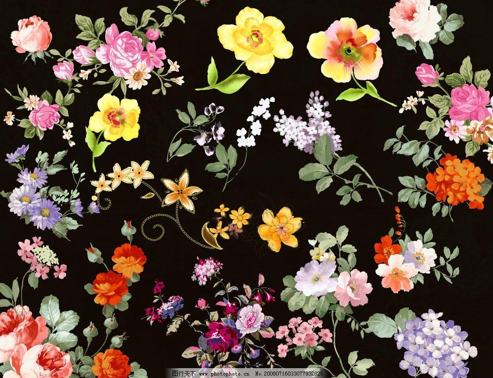 高清花纹psd全集 花 花朵 花纹 角花 花边 鲜花 韩国花纹 psd分层素材