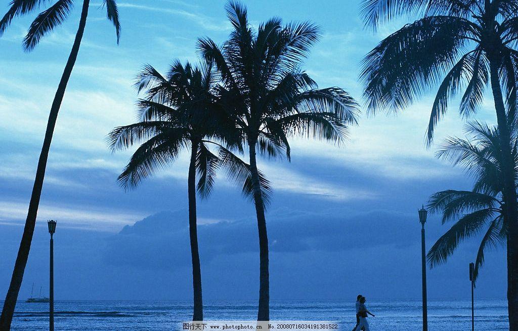 海天一色 大海 蓝天 游客行走 沙滩 椰子树 浮云 旅游摄影 自然风景