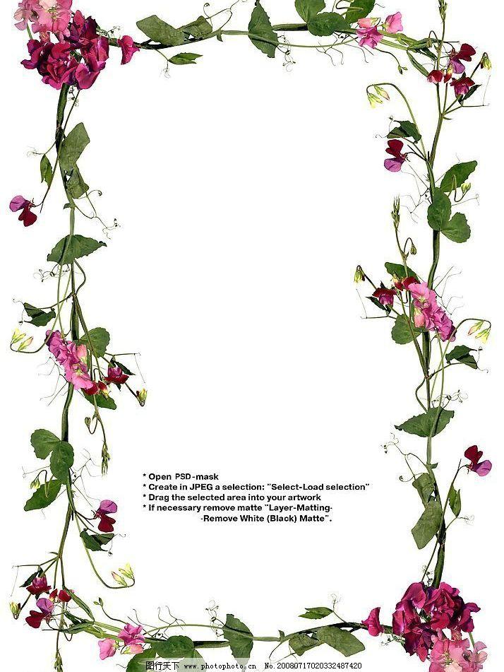 美丽的花边 花边 艺术 模板 绘画 花边模板 设计 素材 底纹边框 花边