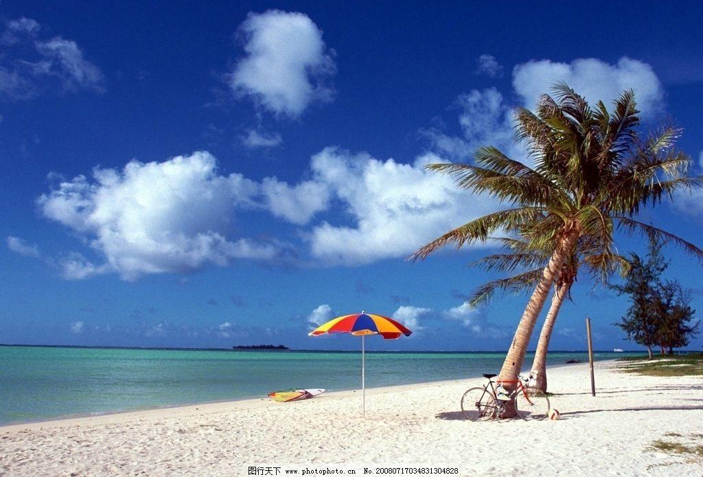 海滩椰树 海滩 自然景观 自然风景 椰树 摄影图库 72dpi jpg