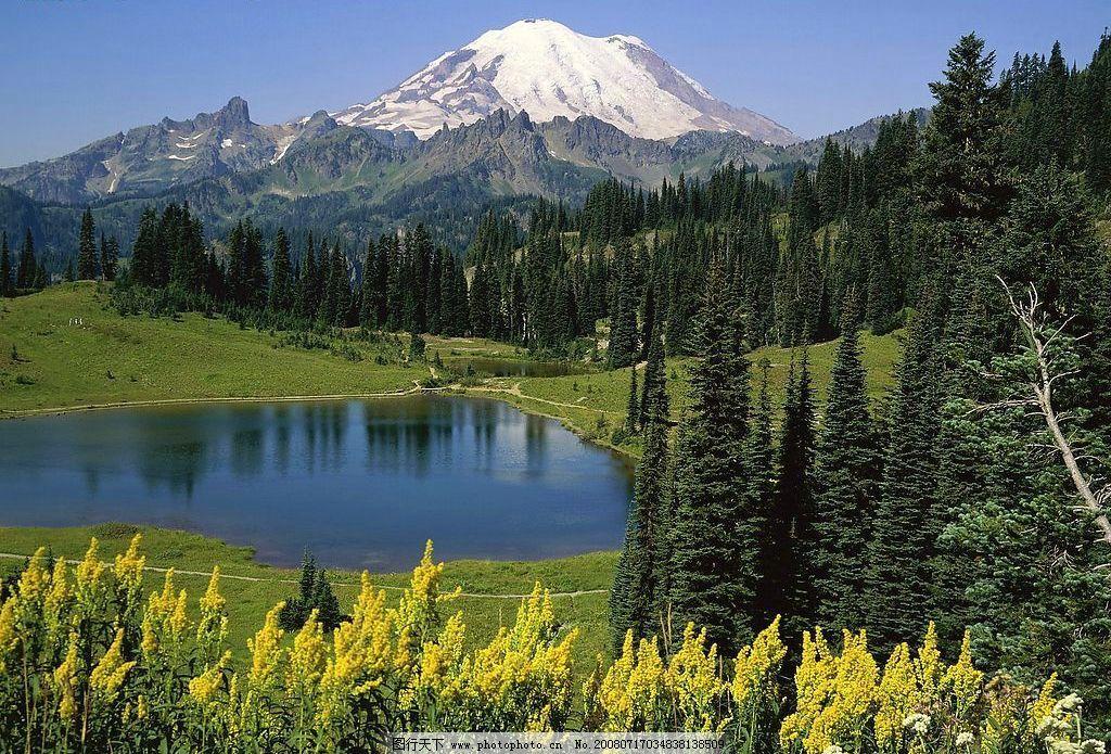 雪山 绿树 湖水 自然景观 自然风景 美丽新世界 摄影图库 72dpi bmp