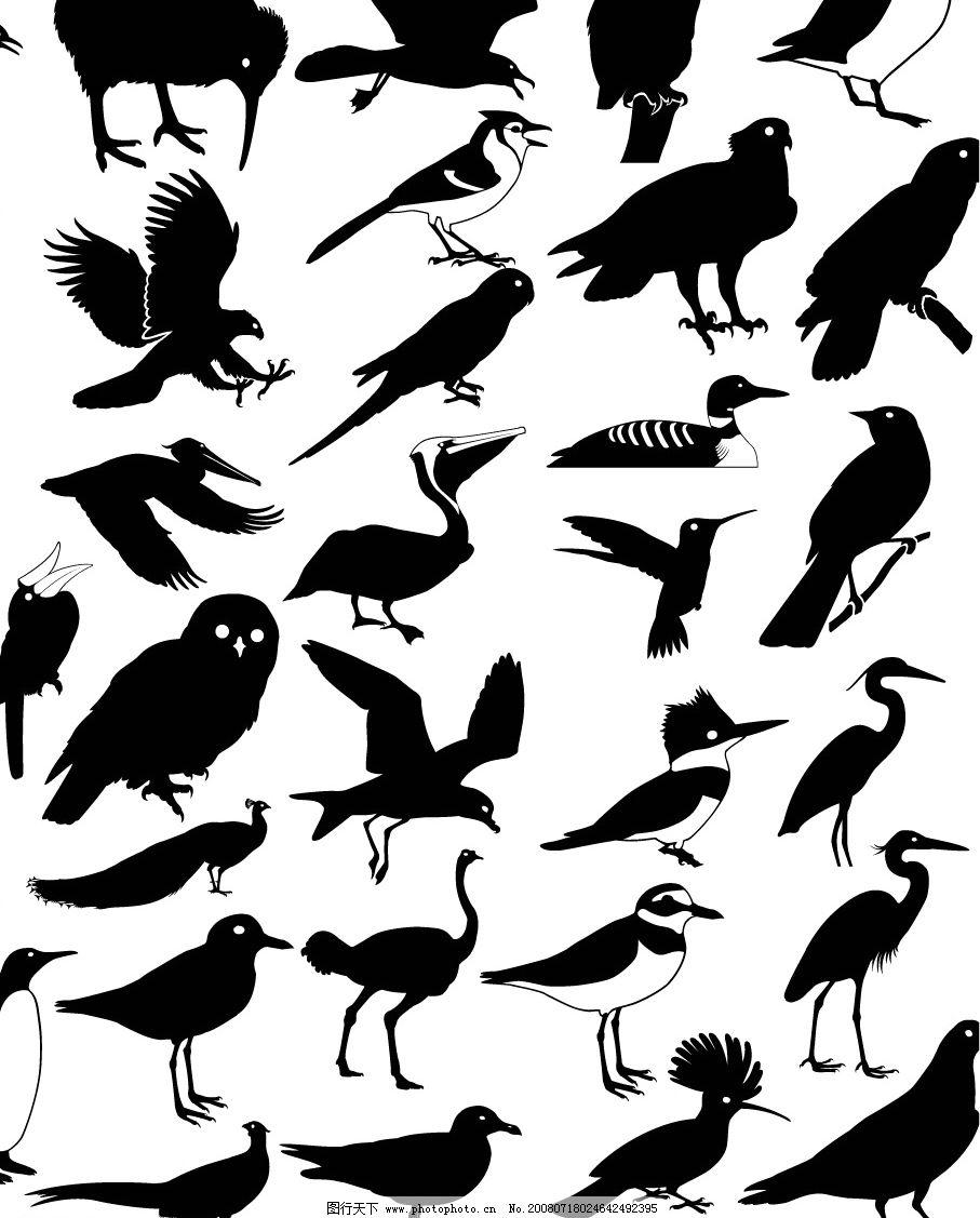 鸟类剪影汇总 动物 飞行动物 矢量图 矢量图库