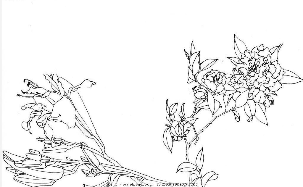花瓶花卉绘画 静物绘画