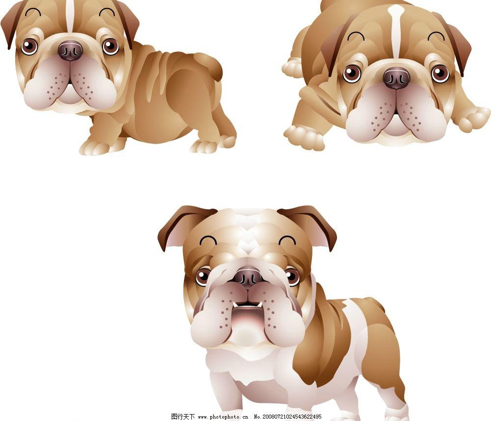 可爱小狗三 小狗 动物