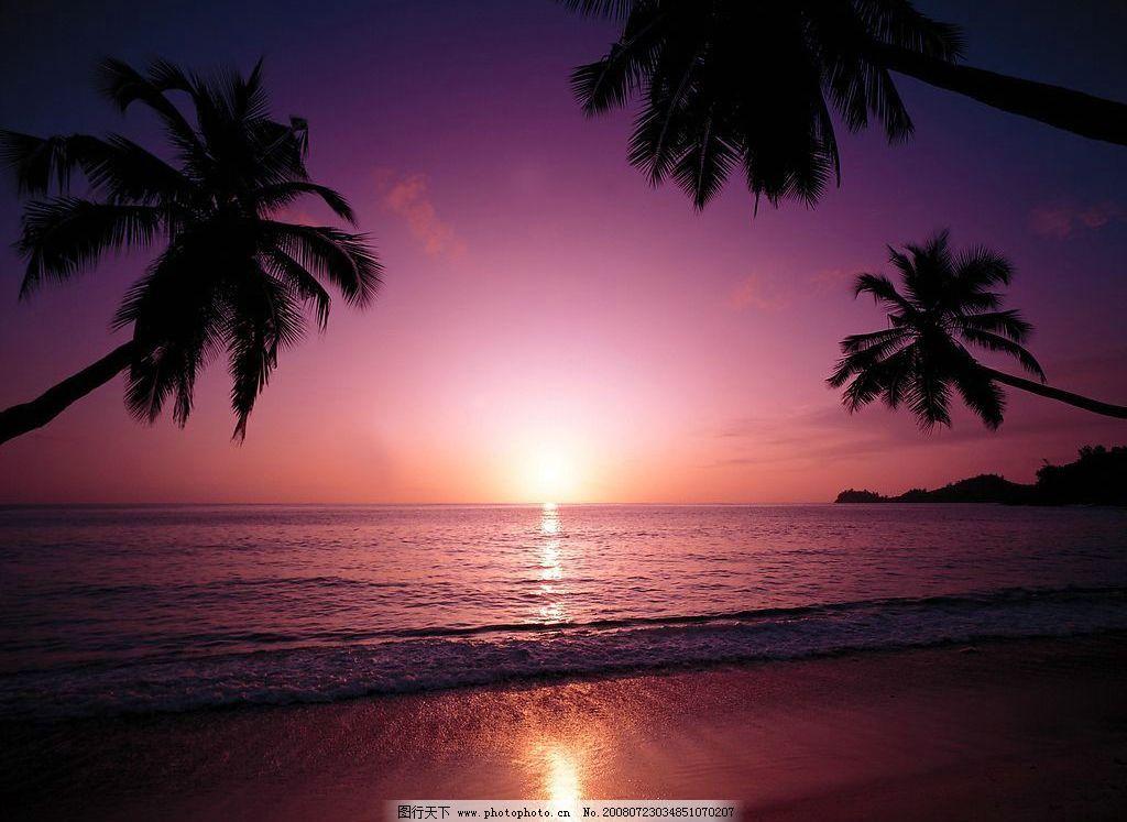 夏威夷关岛 天空 海 椰子树 晚霞 自然景观 自然风景 夏威夷 关岛