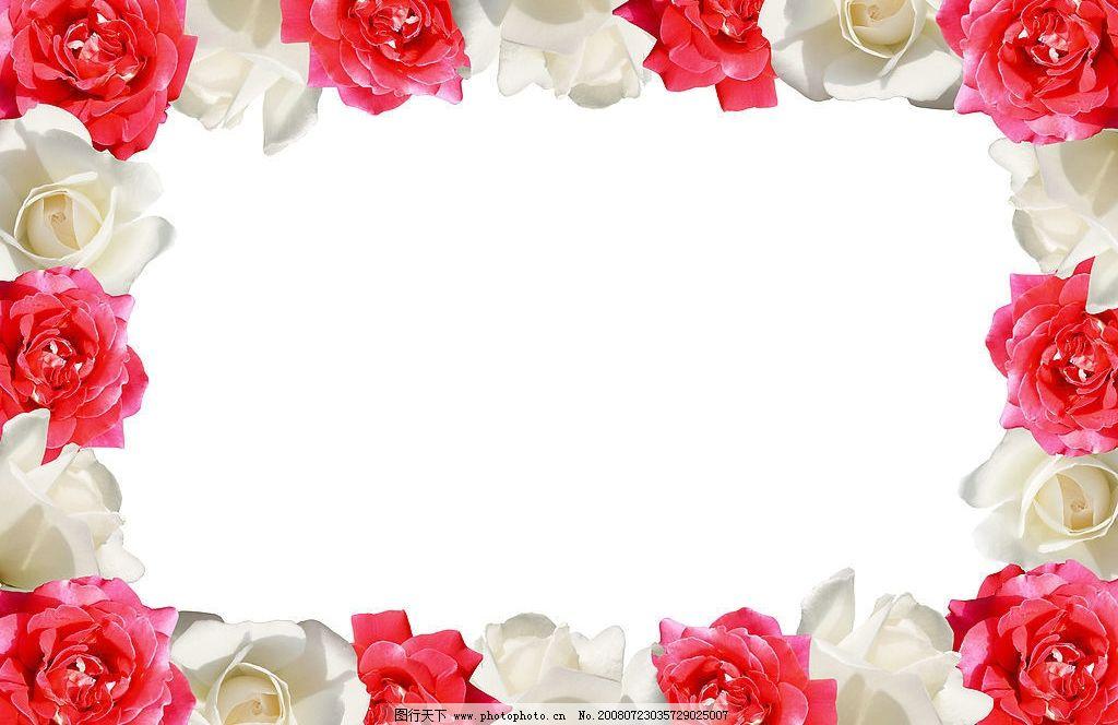 玫瑰花边 玫瑰 花边 红玫瑰 白玫瑰 框 生物世界 花草 摄影图库 300dp