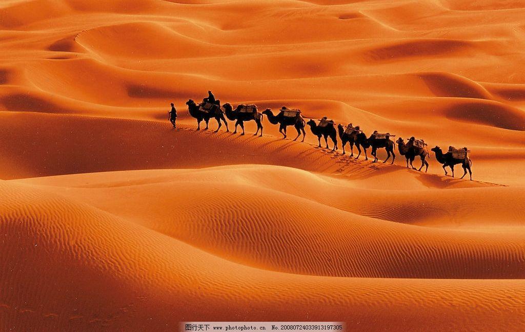 驼铃 沙漠 骆驼 驼队 沙漠风貌 旅游摄影 国内旅游 摄影图库 447dpi