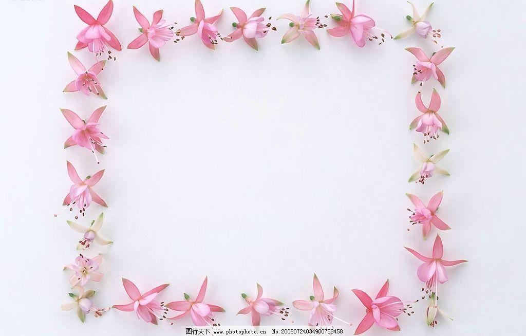 花环 花框 边框 植物类 摄影图库