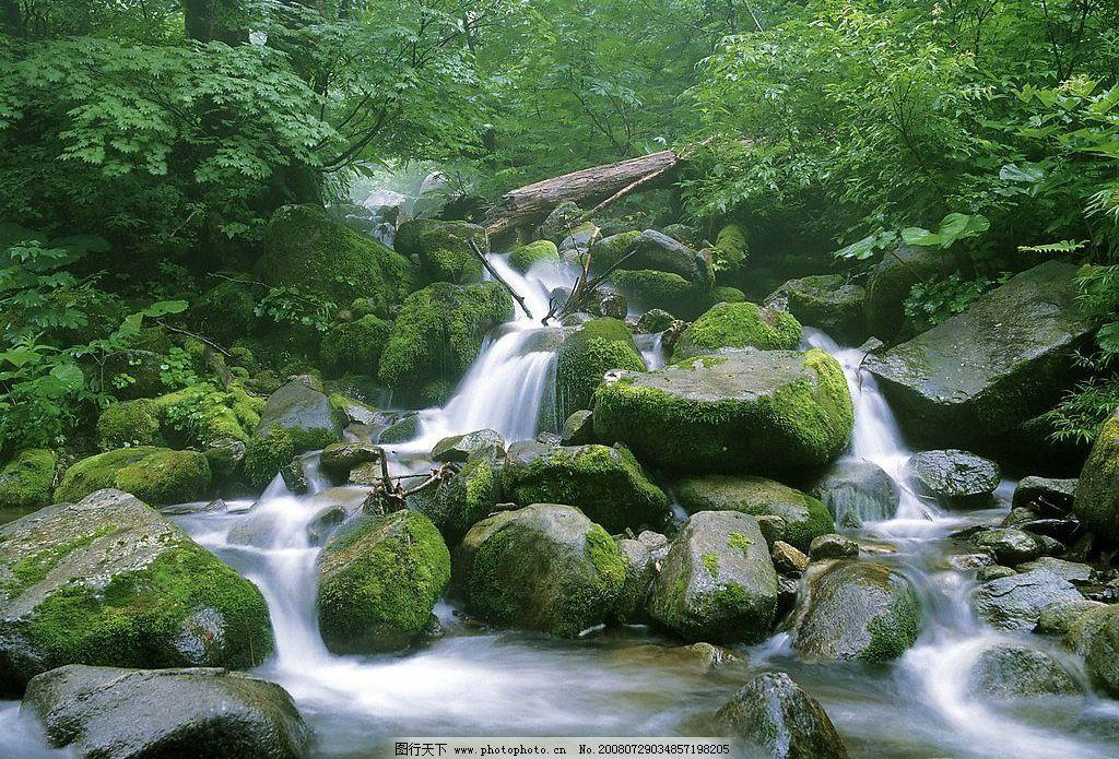 山溪 溪水 山林 清澈 幽静 美景 风景 摄影图库