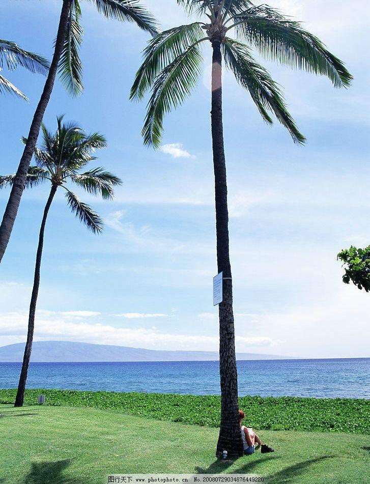 海边读书 椰树 大海 自然景观 自然风景 自然生活 摄影图库 350dpi