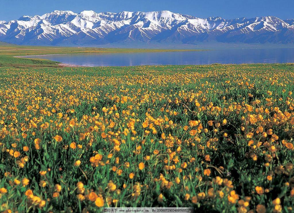 雪山 蓝天湖水 远景雪山 花草 自然景观 自然风景 摄影图库 342dpi