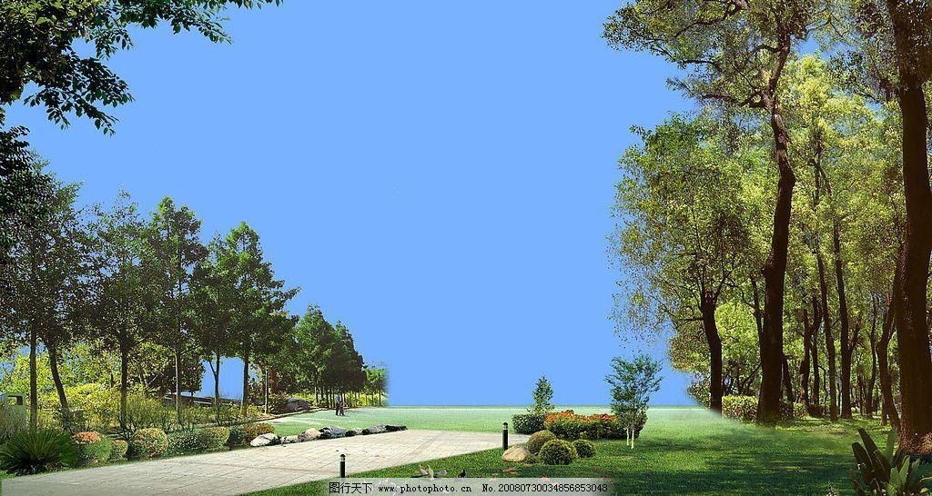 宁静 花园 树木 树林 草地 小径 鸽子 植物 自然景观 自然风景 建筑配