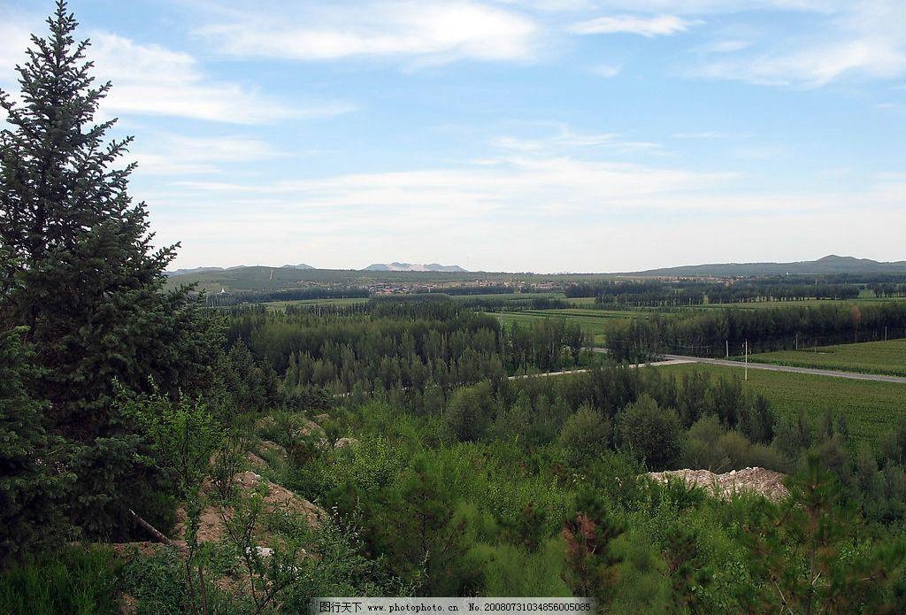 远眺林田 蓝天 远山 防护林 农田 自然景观 自然风景 家乡的草原 摄影