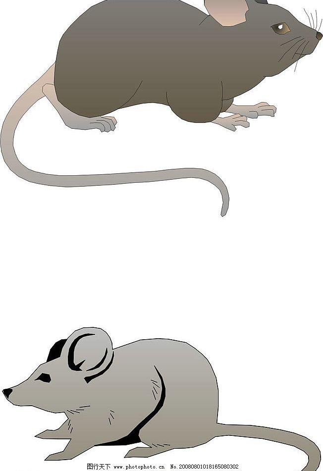五只可爱小老鼠