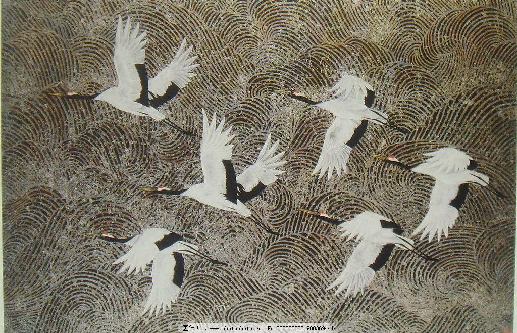 壁纸 动物 鸟 鸟类 1024_659