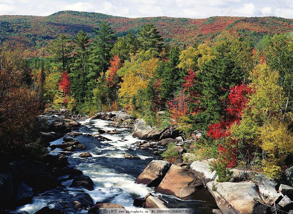 小溪美景 小溪 大山 树 石头 丛林 自然景观 山水风景 摄影图库 300