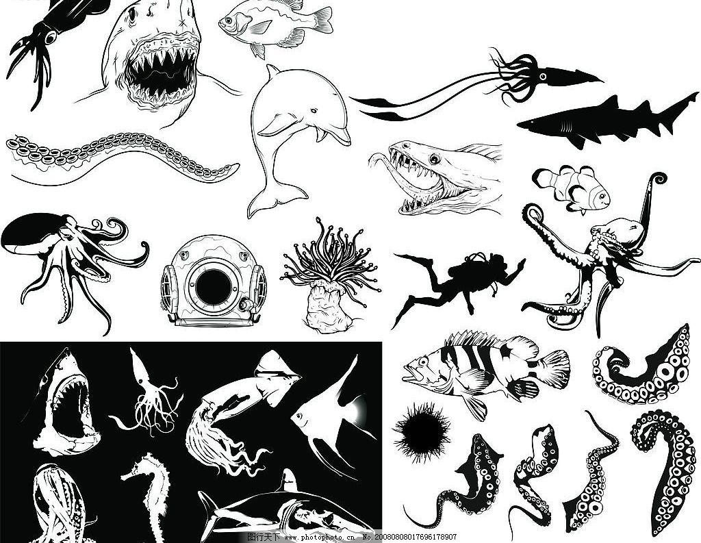 海洋生物图片_其他_ui界面设计_图行天下图库