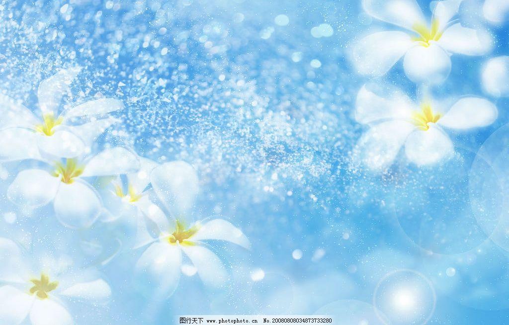 花背景 花 夏日 背景 高分辨率 清凉 自然景观 自然风景 摄影图库 350
