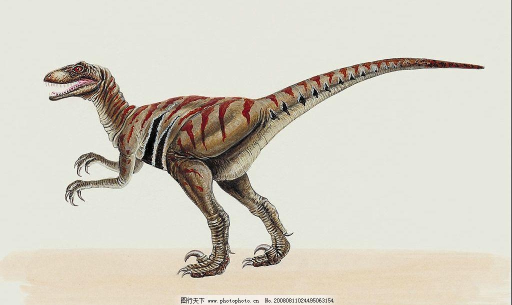 恐龙彩绘 恐龙 逼真 彩绘 生物 绘画 动物 生物世界 野生动物 设计