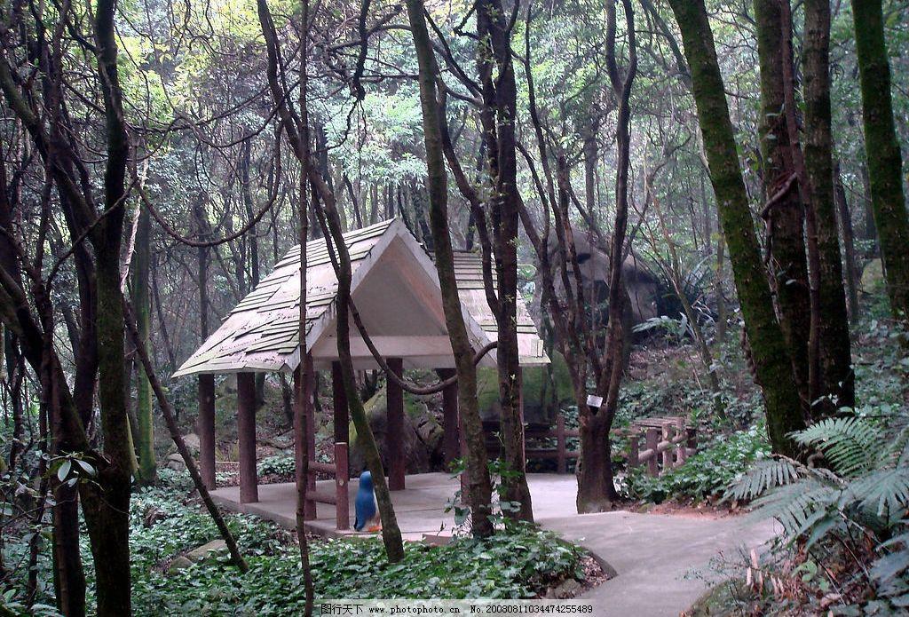 1600x900壁纸森林小屋