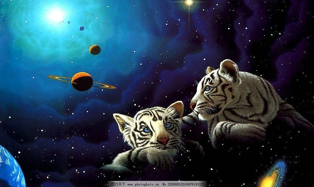 手绘动物 老虎 动漫动画