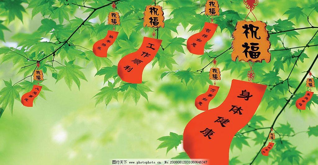 许愿树明信片设计图片