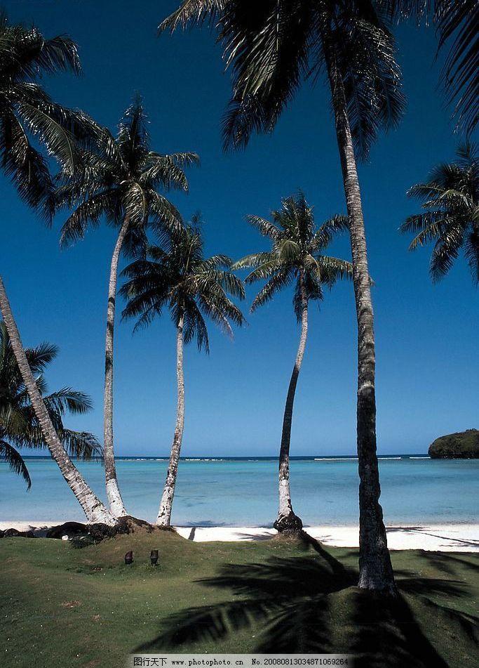 夏威夷关岛 天空 海 椰子树 沙滩 自然景观 自然风景 摄影图库