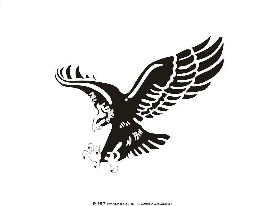 展翅翱翔图片
