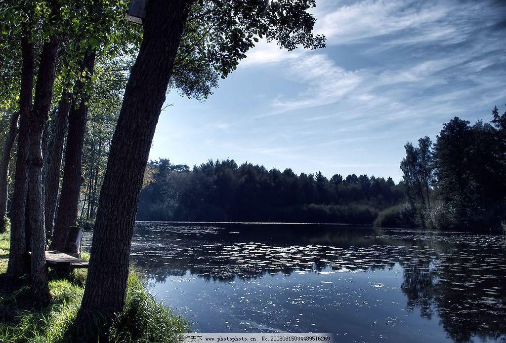 森林和湖泊 湖泊 森林 石头 花 水 水景 自然景观 山水风景 摄影图库