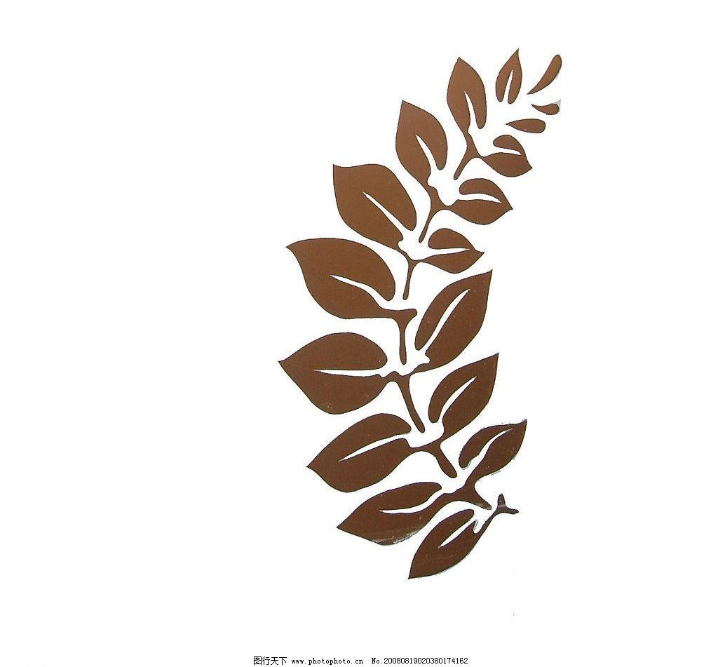 橄榄叶 叶子 底纹边框图片