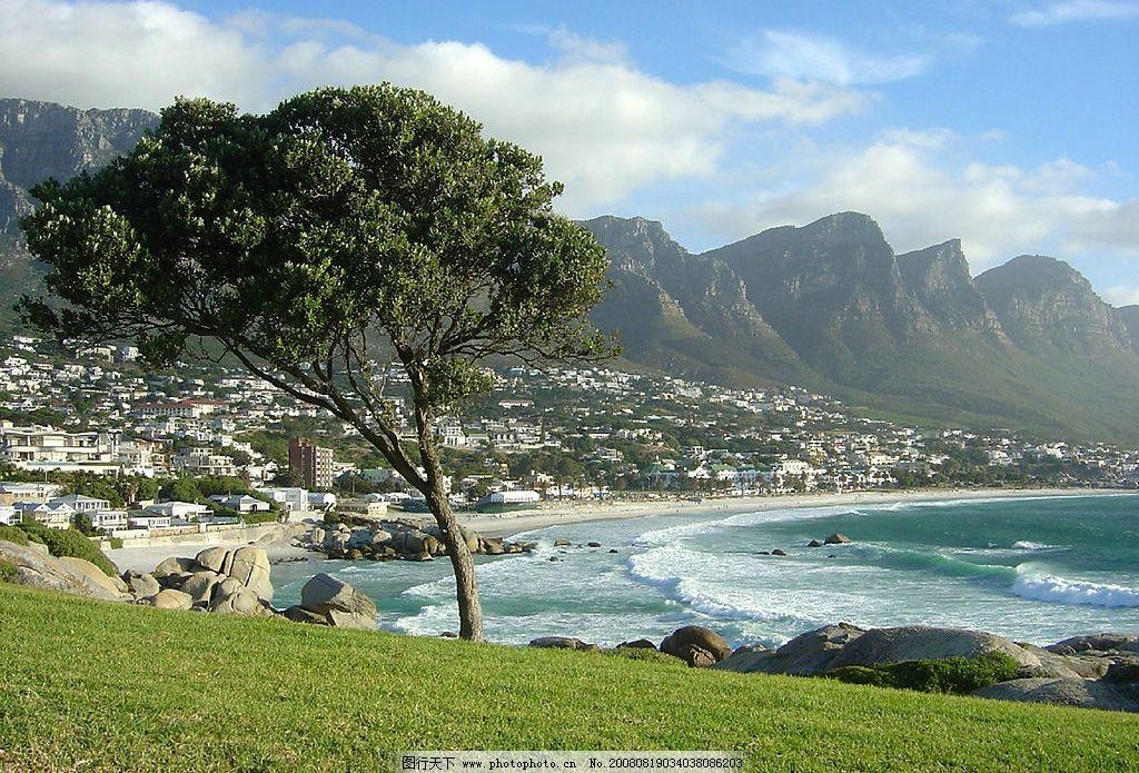 海边沙滩风景 海边 沙滩 树 远景 草地 旅游摄影 国外旅游 摄影图库