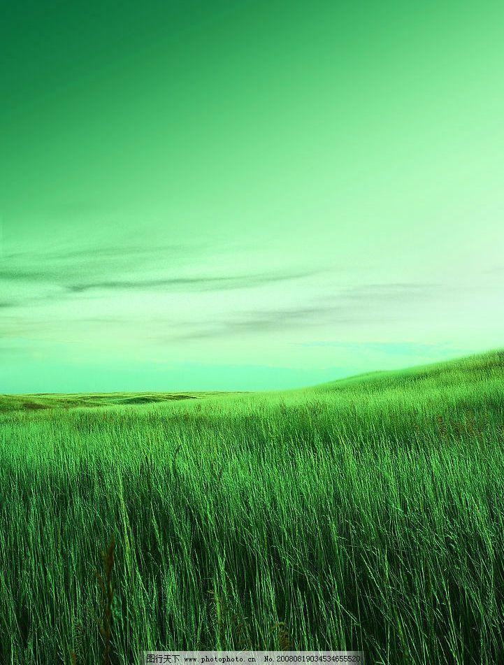 草坪 绿地 风景 自然景观 田园风光 摄影图库 300dpi jpg