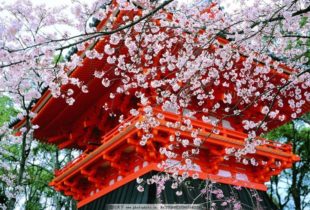 浪漫枫叶风景油画