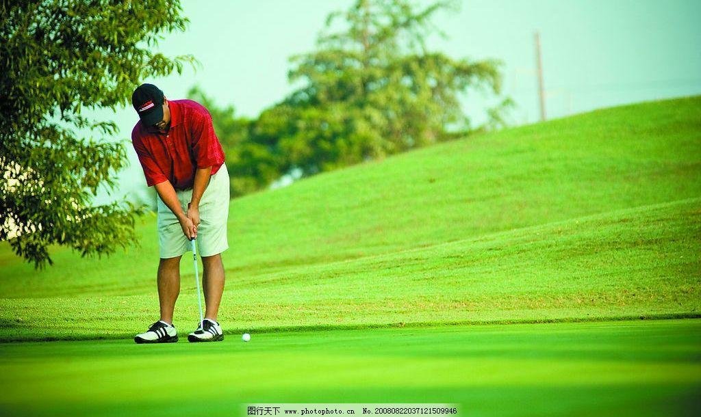 高尔夫推杆图片