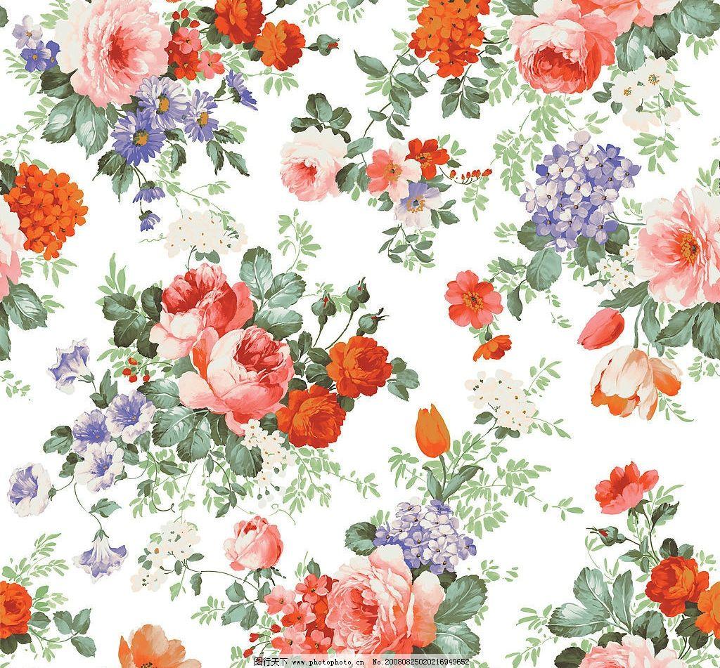 茶花 玫瑰 紫绣球花