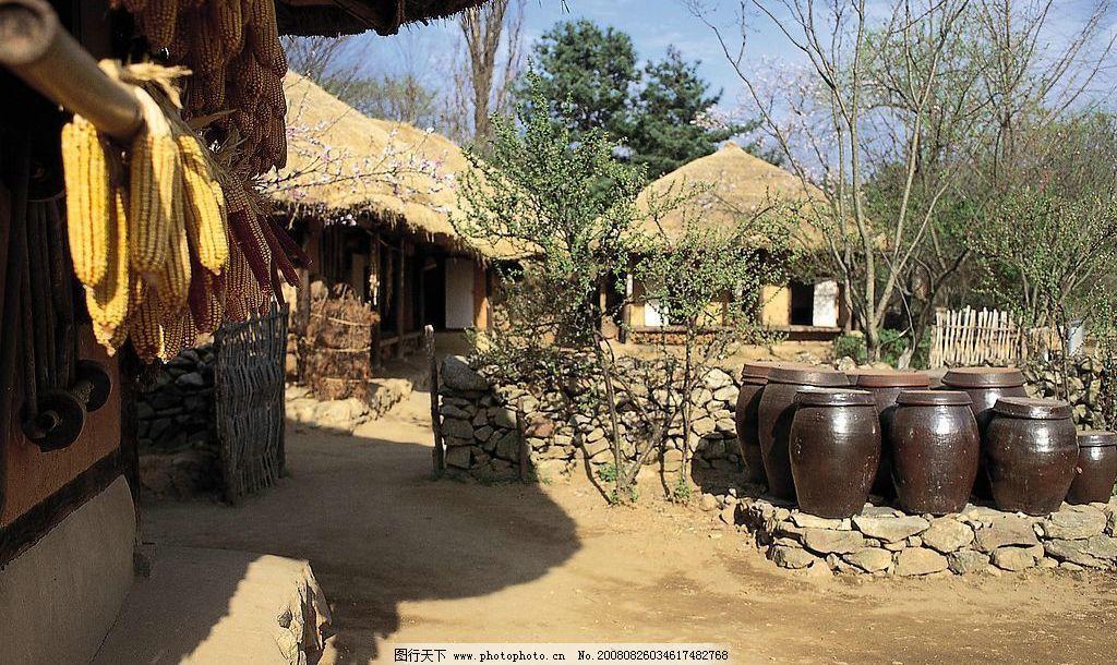 韩国风光 树 坛子 木屋 玉米 石头 自然景观 风景名胜 摄影图库 350