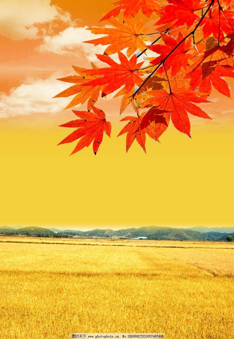 休闲 时尚 风景 自然 清新 高像素 树 蓝天 天空 白云 psd分层素材 源