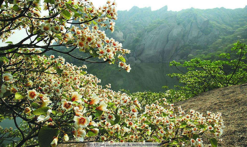 风景图片山水桃花真实
