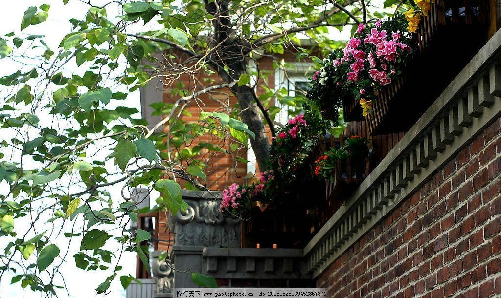 围墙上的花 围墙 上海老房子 建筑园林 建筑摄影 摄影图库 180dpi jpg
