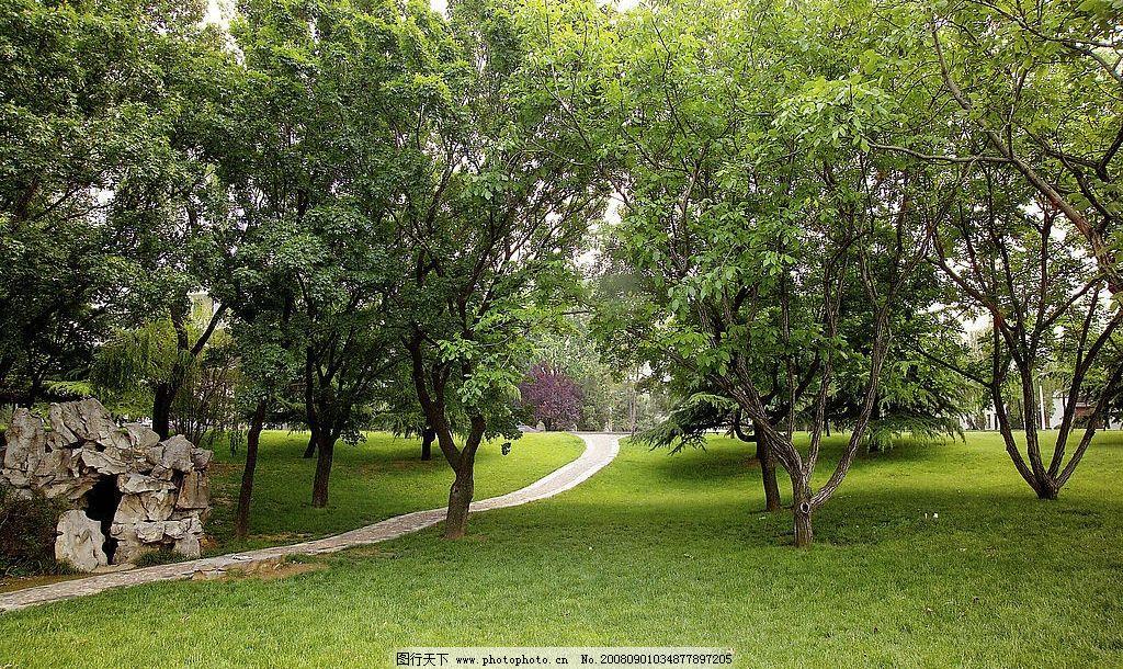 公园美景 园林树木 石头 假山 小路 小径 休闲 草地 树林 绿色 自然
